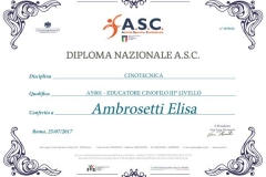 Diploma-ASC-1